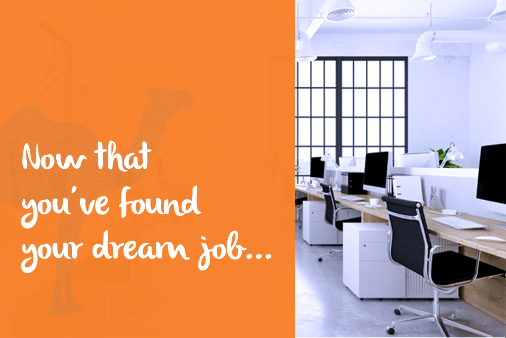 Now That You've Found Your Dream Job…